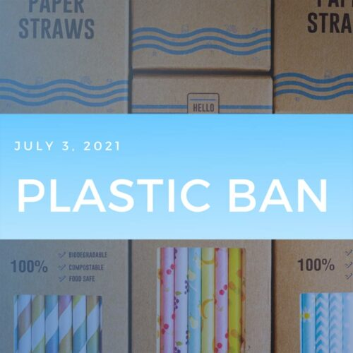 The plastic ban is here – all you need to know